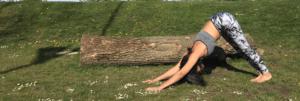 哪種瑜珈課適合你-yoga-class-style-best-for-you